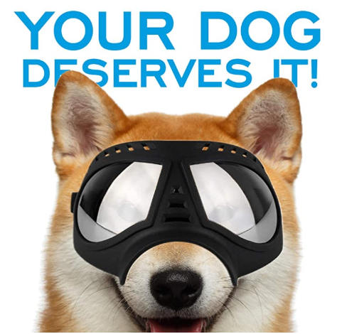 This image has an empty alt attribute; its file name is dog-googles.png